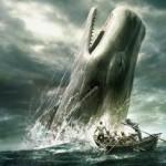 """Buchtipp: """"Moby-Dick"""" von Herman Melville - Ein Klassiker der Literatur"""